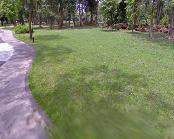 JURONG LAKE GARDENS 360 video experience 0